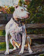 Pit Bull Prints - Wallace the Great Print by Clara Yori