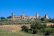 Chianti Vines Photo Framed Prints - Walled Village Of Monteriggioni Chianti Tuscany Italy Framed Print by Mathew Lodge