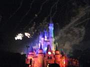 Disney Photos - Walt Disney World Resort - Magic Kingdom - 121273 by DC Photographer