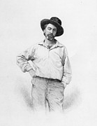 Author Drawings Metal Prints - Walt Whitman frontispiece to Leaves of Grass Metal Print by American School