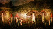 Surreal Mushrooms Framed Prints - Wandering in Delight Framed Print by Pamela Phelps