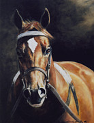 Thoroughbred Paintings - Wando by Linda Shantz