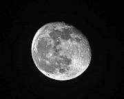 Gibbous Moon Prints - Waning Pink Moon Print by Al Powell Photography USA