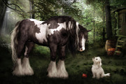 Gypsy Vanner Digital Art - Want to Play by Shanina Conway