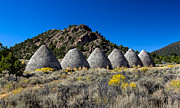 Nevada Prints - Wards Charcoal Ovens Print by Robert Bales