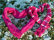 Twosome Prints - Warm Valentine Scarves Print by Anna Lisa Yoder