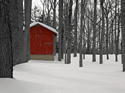 Red Barn In Winter Photos - Warmth in the Cold 3 by Steven  Michael