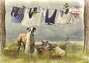 Boxer Mixed Media Posters - Wash Day Poster by Trudi Simmonds