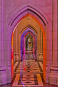 D.c. Framed Prints - Washington Cathedral Light Show Framed Print by Susan Candelario