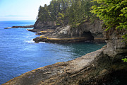 Coast Photo Originals - Washington Coastline  by Jeff Klingler