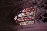 Cathedral Photos - Washington National Cathedral - Washington DC - 011381 by DC Photographer