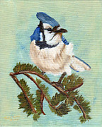 J Cheyenne Howell - Watchful Blue Jay