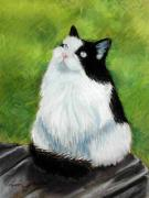 Cat Pastels - Watching the Birds by Lenore Gaudet