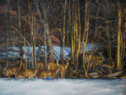 Whitetail Deer Originals - Watching the Herd by Natalie LaRocque