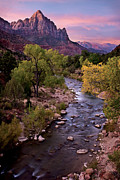 Purple Clouds Prints - Watchman  Tower Zion Sunrise Print by Dave Dilli
