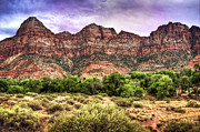 Tammy Wetzel - Watchman Trail - Zion