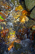 Water In Creek Posters - Water Abstract 2 Poster by Sharon  Talson