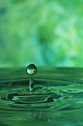 Linda  Blair - Water Drop Green