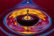 Michael Abbey - Water Drop