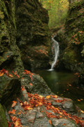 Water Falls As Autumn Starts Print by Karol  Livote