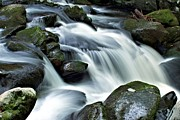 Motor Nature Trail Posters - Water Flows Through the Mountains Poster by Carol R Montoya
