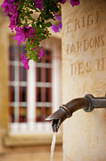 Provence Photos - Water Fountain by Brian Jannsen