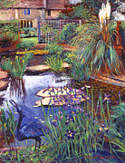 Gardenscape Paintings - Water Garden by David Lloyd Glover