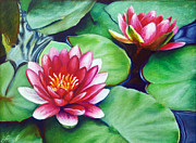 Flower Pastels Framed Prints - Water Lilies Framed Print by Anna Abramska