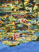 David Lloyd Glover - Water Lilies Giverny