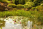 Bonnie Bruno - Water Lilies in the Garden