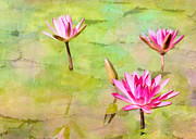 Colorful Contemporary Art - Water Lilies Inspired by Monet by Sabrina L Ryan