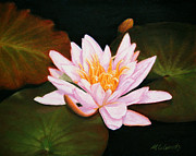 Marna Edwards Flavell - Water Lily