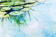 Lily Pond Framed Prints - Water Lily Pads Framed Print by Rebecca Cozart