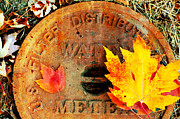 Steel Mixed Media Posters - Water Meter Cover With Autumn Leaves Abstract Poster by Andee Photography