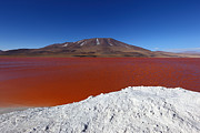 Bolivia - Water on Fire at Laguna Colorada by James Brunker