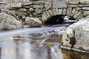 Woodland Scenes Photo Prints - Water Under The Bridge Print by Andrew Pacheco