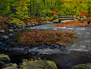 Autumn Foliage Photos - Water Under The Bridge by Susan Candelario