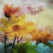Semi Abstract Metal Prints - Watercolor Daisies Metal Print by Janice Austin