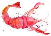 Claw Painting Metal Prints - Watercolor illustration of lobster Metal Print by Regina Jershova
