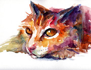 Contemporary Cat Prints Framed Prints - Watercolor orange tubby cat Framed Print by Svetlana Novikova