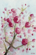 Cherry Art Posters - Watercolor Painting of Pink Cherry Blossoms Poster by Beverly Brown Prints