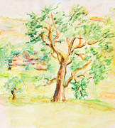 Trees. Field Prints - Watercolor Rural Summer Landscape Print by Kiril Stanchev