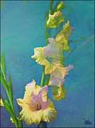 Gladiolas Painting Prints - Watercolor Study of My Garden Gladiolas Print by Douglas MooreZart