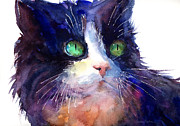 Cats - Watercolor Tuxedo tubby Cat by Svetlana Novikova