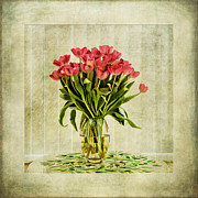 Backgrounds Digital Art Metal Prints - Watercolour Tulips Metal Print by John Edwards