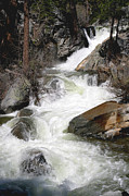Waterfall Along The Rubicon Trail - Lake Tahoe Print by Patricia Sanders