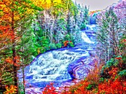 Waterfall At Dupont Forest Nc Print by Annie Zeno