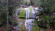 Tom Mansfield - Waterfall Green