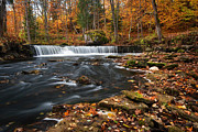Cascade Pyrography Posters - Waterfall in autumn Poster by Anna Grigorjeva