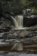 Waterfall Reflection On Big Run River  Print by Dan Friend